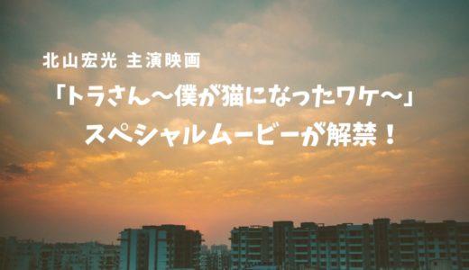 北山宏光 主演映画「トラさん~僕が猫になったワケ~」スペシャル映像が解禁